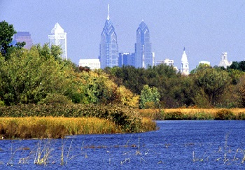 Wetlands provide clean water, control flooding, and provide quality wildlife habitat.
