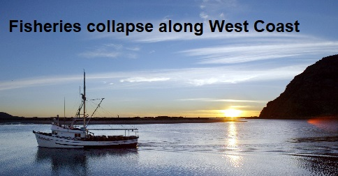 Fisheries collapse along West Coast