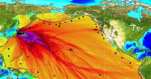 Fukushima Radiation Found In Hawaii Fish